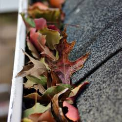 Clogged gutters filled with fall leaves  in Eastpointe